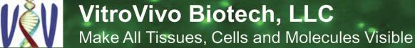 Logo: VitroVivo Biotech